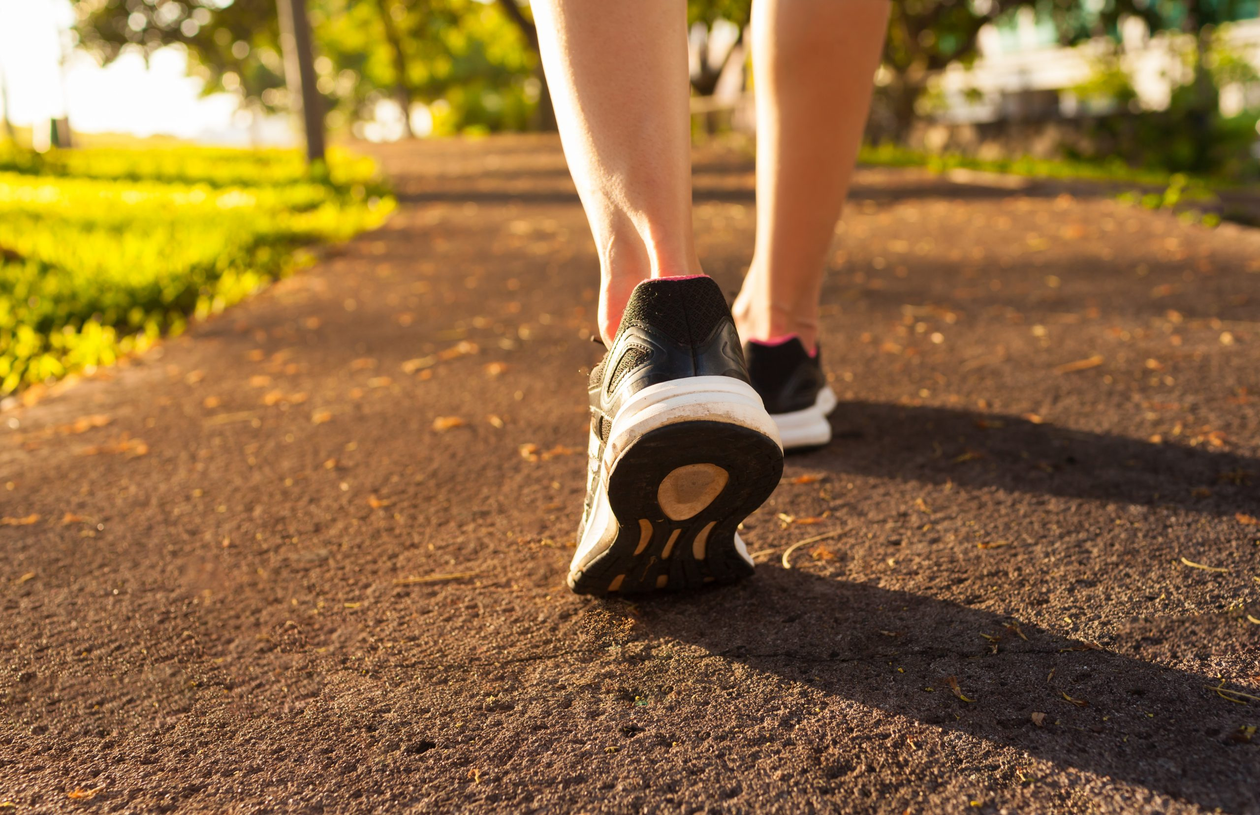 A close-up view of a person's shoes as they walk outside on a trail
